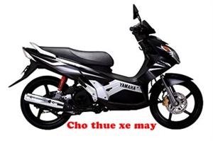 Cho thuê xe máy giá rẻ ở  tại Hà Nội
