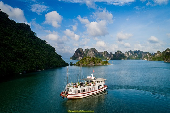 tour ha long VIP 1 ngày aviva